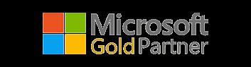 Microsoft gold BI partner india